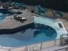 Aquatic-Environments-16-9-1140x460